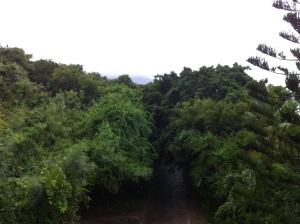 Rain 001
