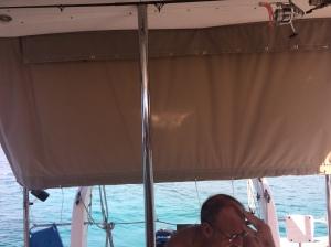 Back sunshade (2)