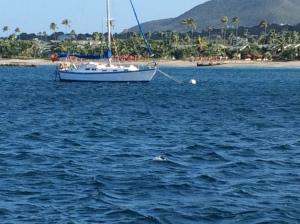 Beach at Nevis